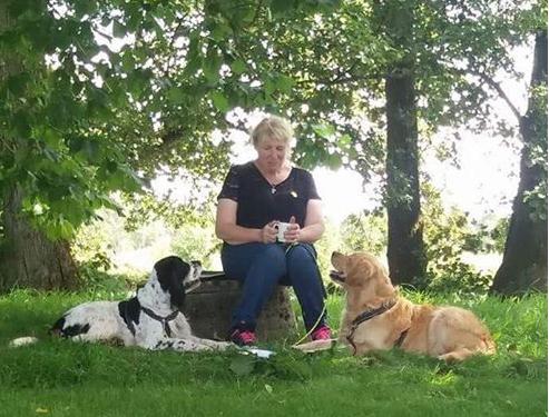 Bra relation mellan hund och människa